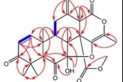 小分子化合物结构确证相关技术要求和经验总结