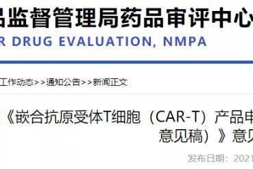 CDE征求:CAR-T指导原则意见!!
