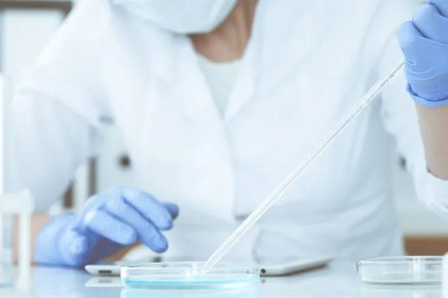 CRO巨头:查尔斯河宣布剥离,涉及基因治疗CDMO和动物模型